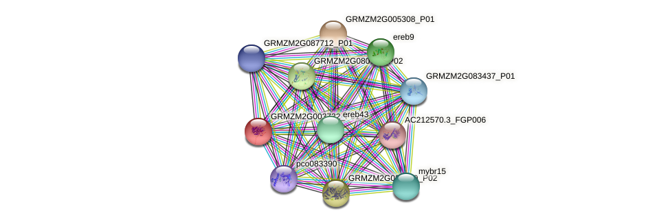 Zm.22107 protein (Zea mays) - STRING interaction network