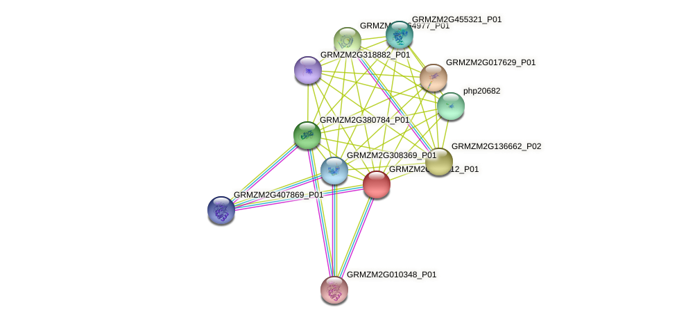 Zm.100266 protein (Zea mays) - STRING interaction network
