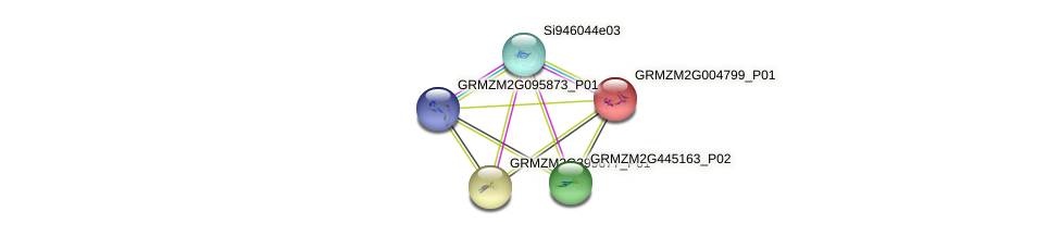 GRMZM2G004799_P01 protein (Zea mays) - STRING interaction network