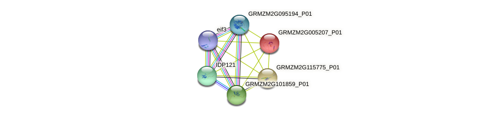 wrky63 protein (Zea mays) - STRING interaction network