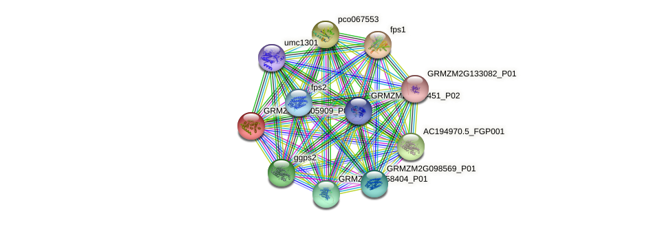 ggps4 protein (Zea mays) - STRING interaction network