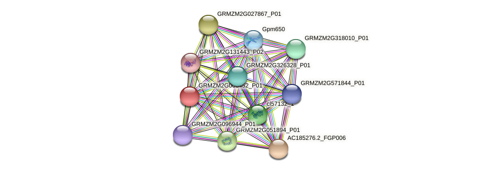 GRMZM2G006452_P01 protein (Zea mays) - STRING interaction network
