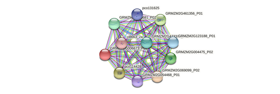 GRMZM2G006673_P02 protein (Zea mays) - STRING interaction network