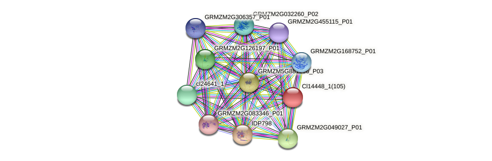 GRMZM2G006806_P01 protein (Zea mays) - STRING interaction network