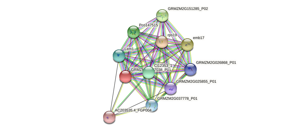 Zm.94327 protein (Zea mays) - STRING interaction network