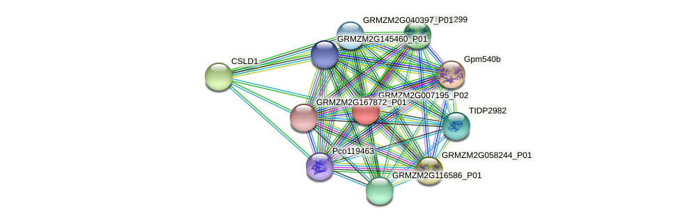 Zm.38647 protein (Zea mays) - STRING interaction network