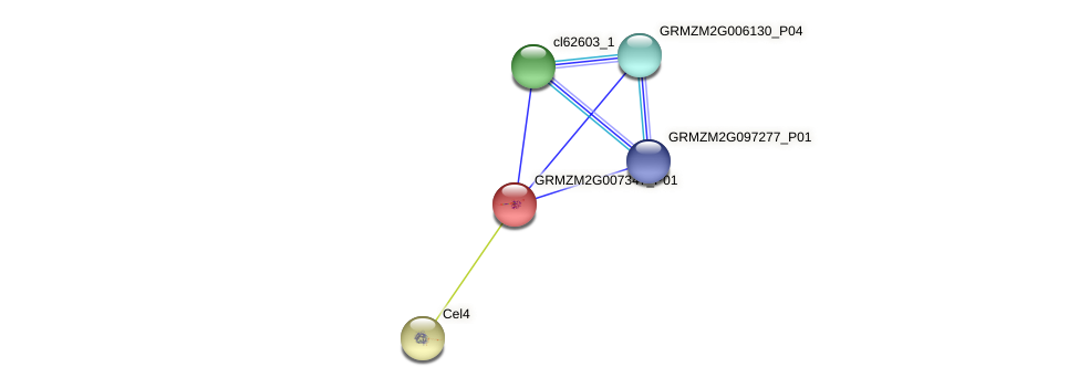 GRMZM2G007347_P01 protein (Zea mays) - STRING interaction network