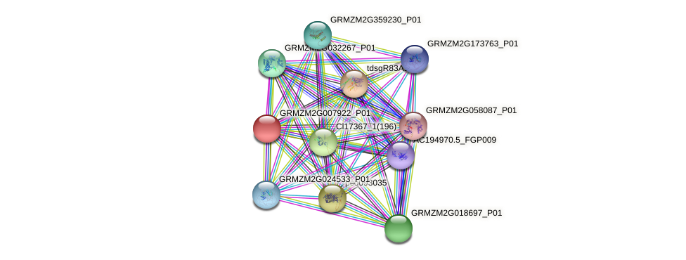 GRMZM2G007922_P01 protein (Zea mays) - STRING interaction network