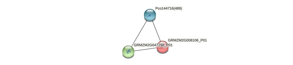 GRMZM2G008106_P01 protein (Zea mays) - STRING interaction network