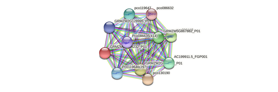 GRMZM2G008232_P01 protein (Zea mays) - STRING interaction network