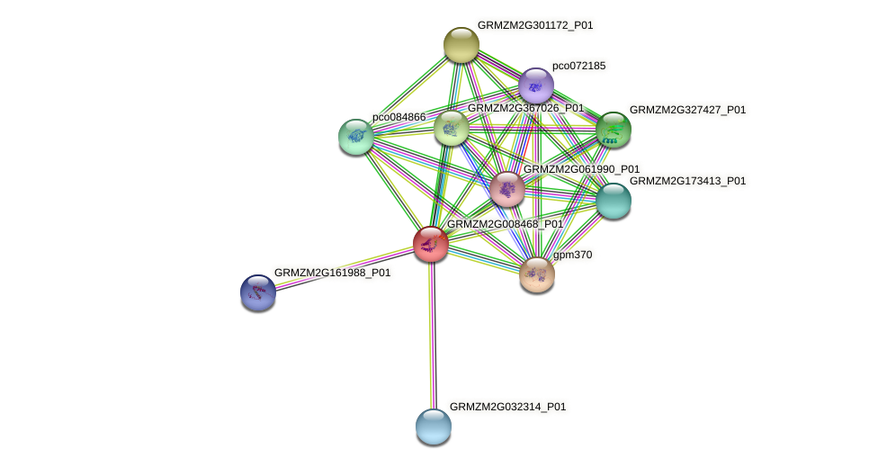 GRMZM2G008468_P01 protein (Zea mays) - STRING interaction network