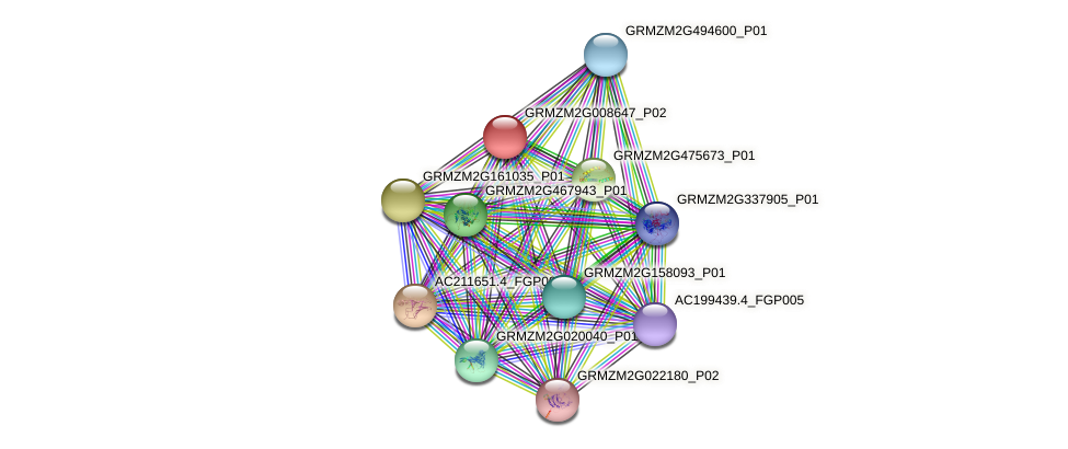 GRMZM2G008647_P02 protein (Zea mays) - STRING interaction network