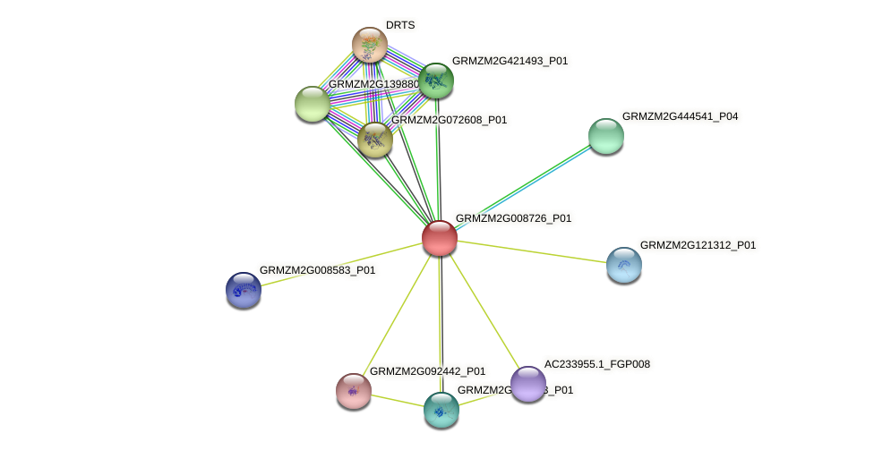 GRMZM2G008726_P01 protein (Zea mays) - STRING interaction network
