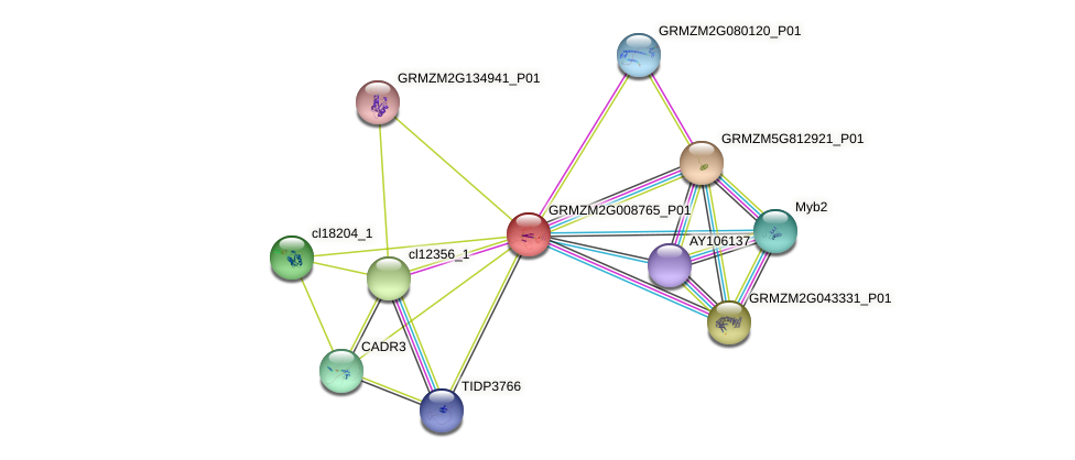 Zm.84886 protein (Zea mays) - STRING interaction network