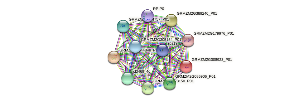 GRMZM2G008923_P01 protein (Zea mays) - STRING interaction network