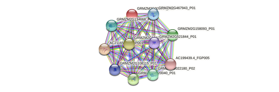 GRMZM2G009157_P01 protein (Zea mays) - STRING interaction network