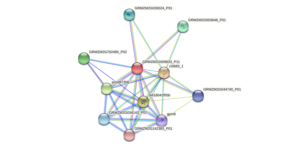 GRMZM2G009633_P11 protein (Zea mays) - STRING interaction network