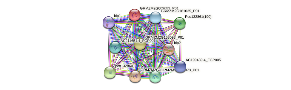GRMZM2G009683_P01 protein (Zea mays) - STRING interaction network