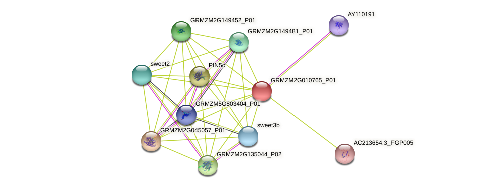 GRMZM2G010765_P01 protein (Zea mays) - STRING interaction network