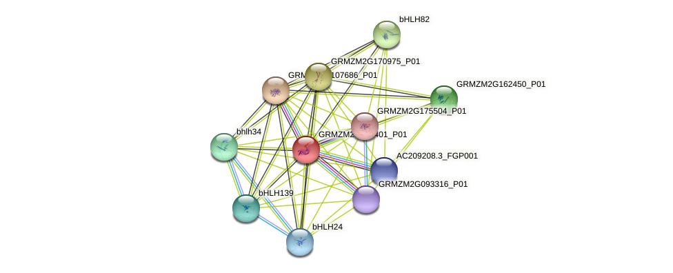 Zm.30635 protein (Zea mays) - STRING interaction network
