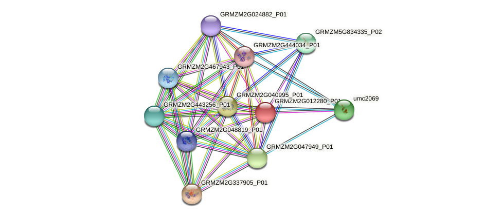 GRMZM2G012280_P01 protein (Zea mays) - STRING interaction network