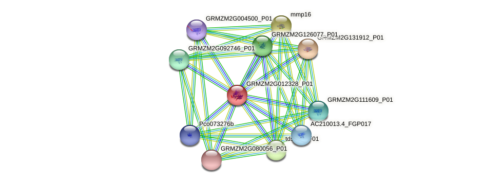 Zm.94163 protein (Zea mays) - STRING interaction network