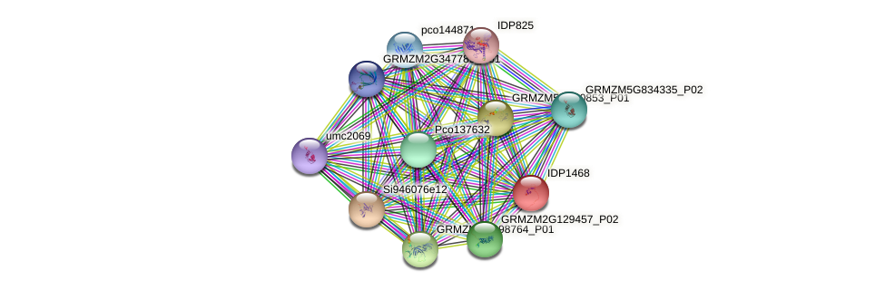 IDP1468 protein (Zea mays) - STRING interaction network