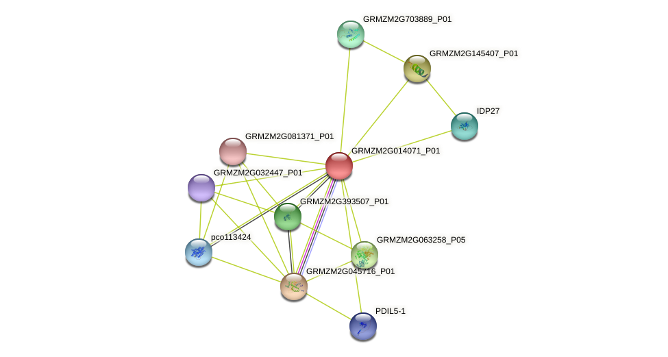 Zm.139598 protein (Zea mays) - STRING interaction network