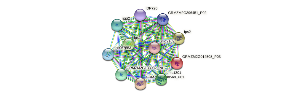 GRMZM2G014508_P02 protein (Zea mays) - STRING interaction network