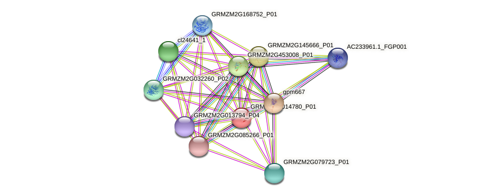 GRMZM2G014780_P01 protein (Zea mays) - STRING interaction network