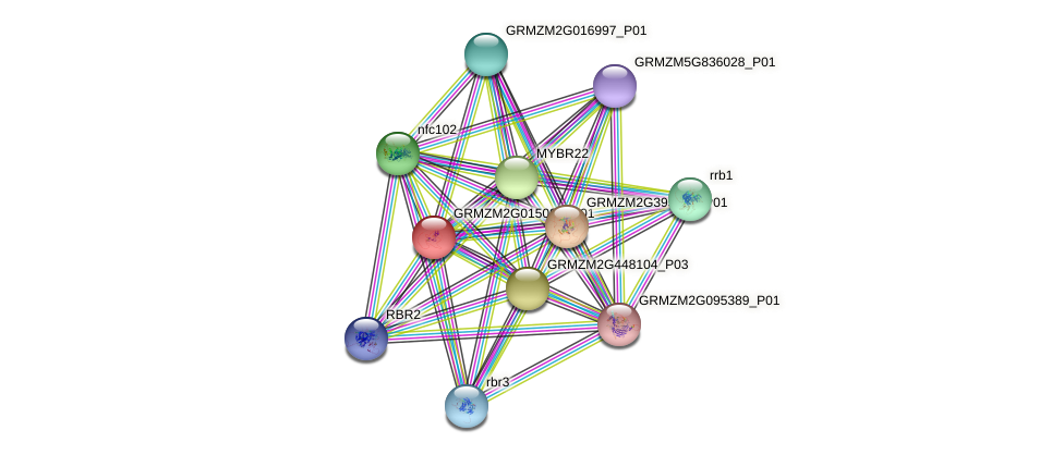 cpp2 protein (Zea mays) - STRING interaction network