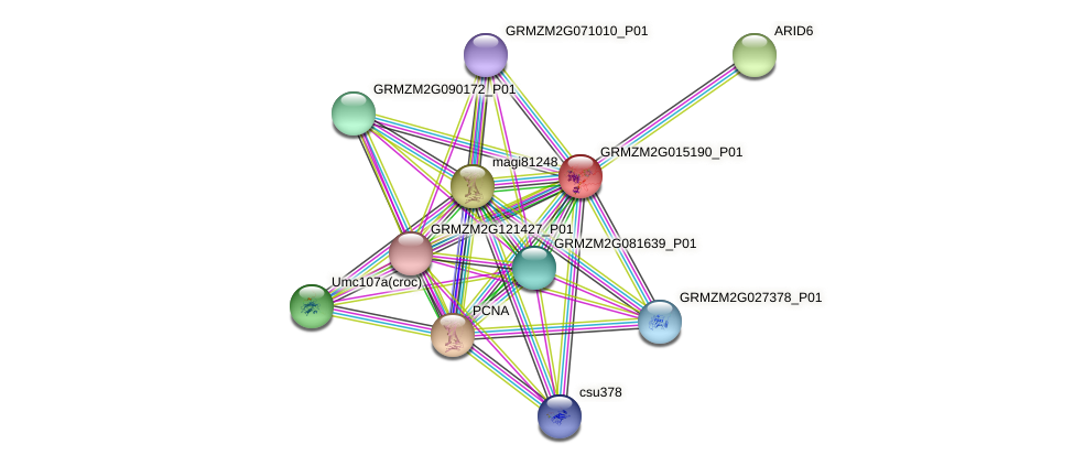GRMZM2G015190_P01 protein (Zea mays) - STRING interaction network