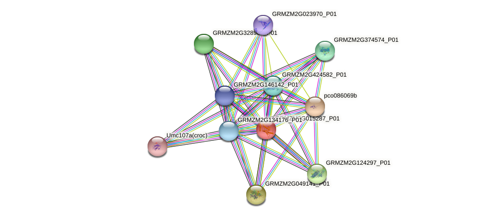 IDP334 protein (Zea mays) - STRING interaction network