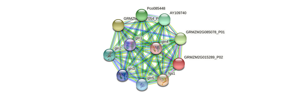 100502380 protein (Zea mays) - STRING interaction network