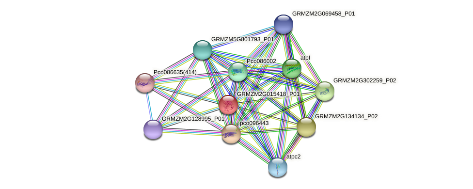 Zm.23735 protein (Zea mays) - STRING interaction network