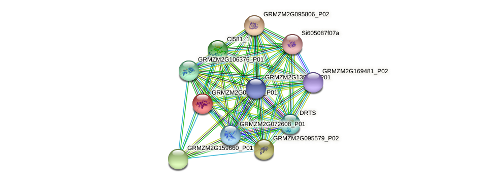 Zm.121719 protein (Zea mays) - STRING interaction network