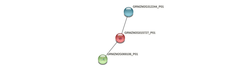 GRMZM2G015727_P01 protein (Zea mays) - STRING interaction network