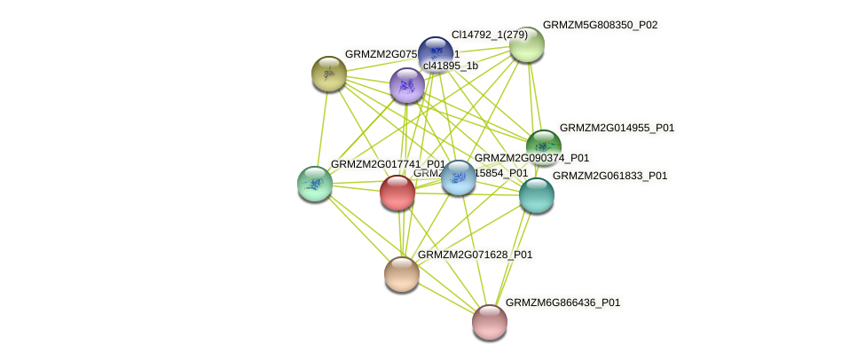 GRMZM2G015854_P01 protein (Zea mays) - STRING interaction network
