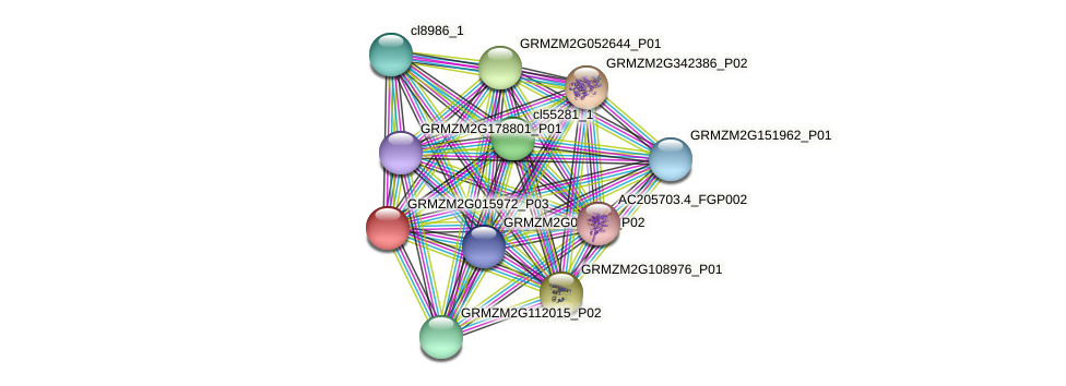 GRMZM2G015972_P03 protein (Zea mays) - STRING interaction network