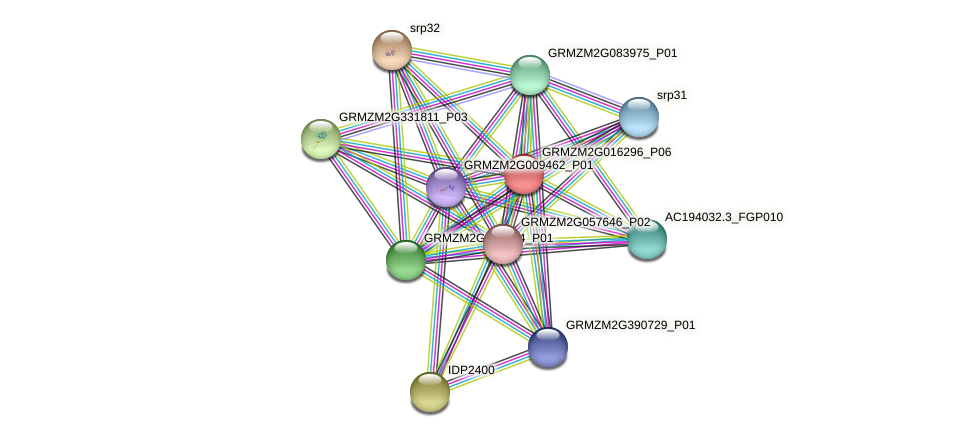 SC30 protein (Zea mays) - STRING interaction network
