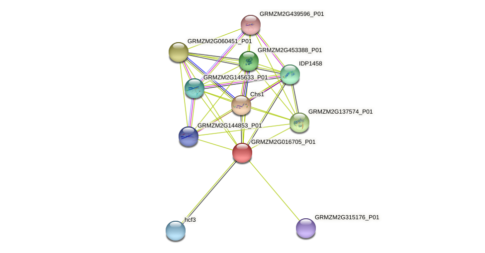 100276228 protein (Zea mays) - STRING interaction network