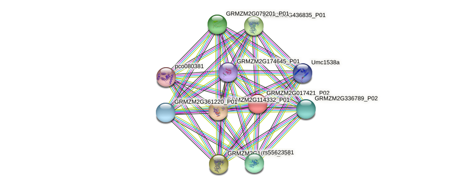 Zm.87220 protein (Zea mays) - STRING interaction network