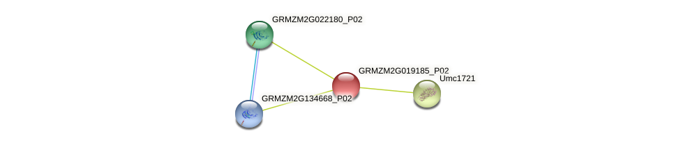Zm.132309 protein (Zea mays) - STRING interaction network