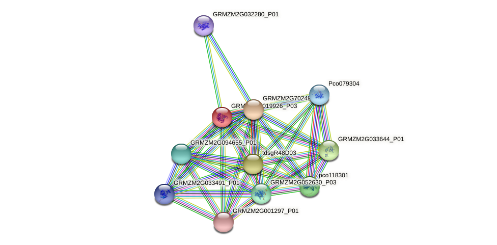 GRMZM2G019926_P03 protein (Zea mays) - STRING interaction network
