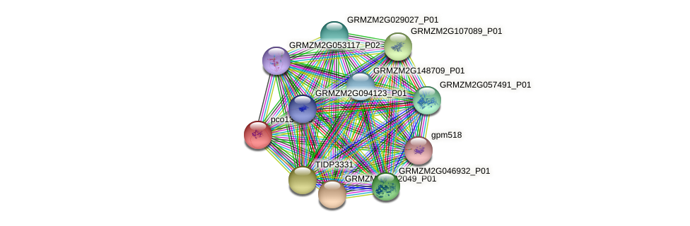 pco134375 protein (Zea mays) - STRING interaction network