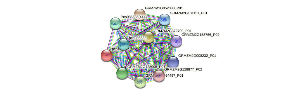 pco119647 protein (Zea mays) - STRING interaction network