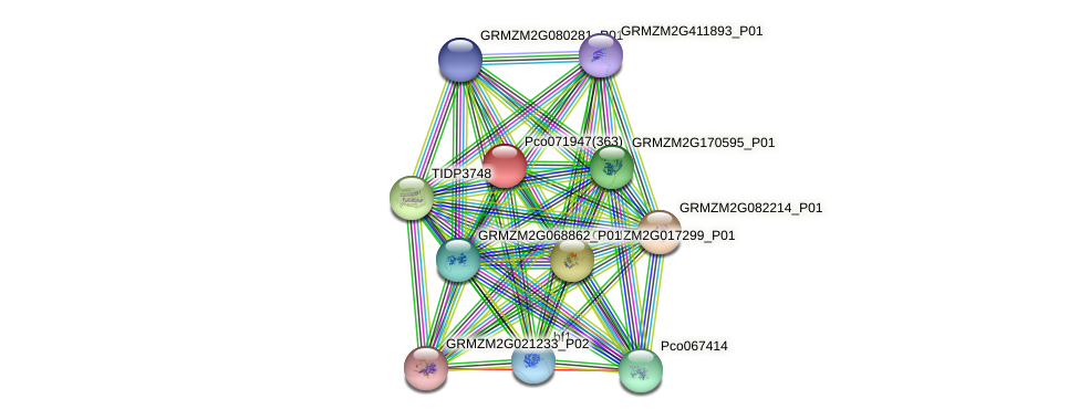 GRMZM2G022252_P04 protein (Zea mays) - STRING interaction network