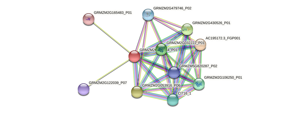 GRMZM2G023254_P01 protein (Zea mays) - STRING interaction network