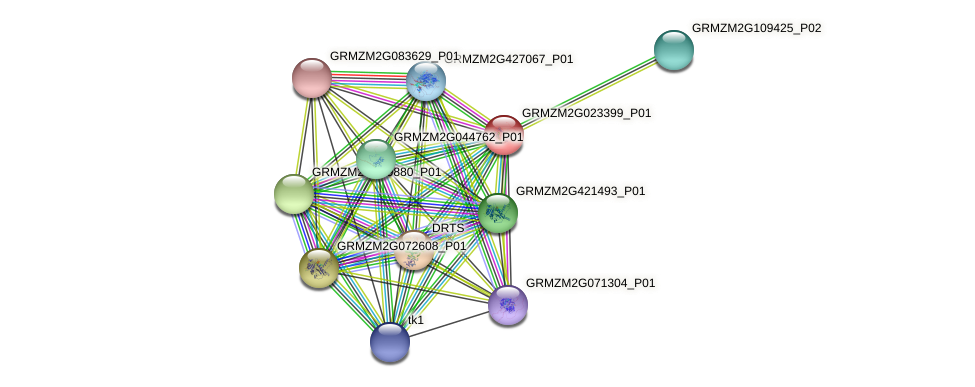 GRMZM2G023399_P01 protein (Zea mays) - STRING interaction network