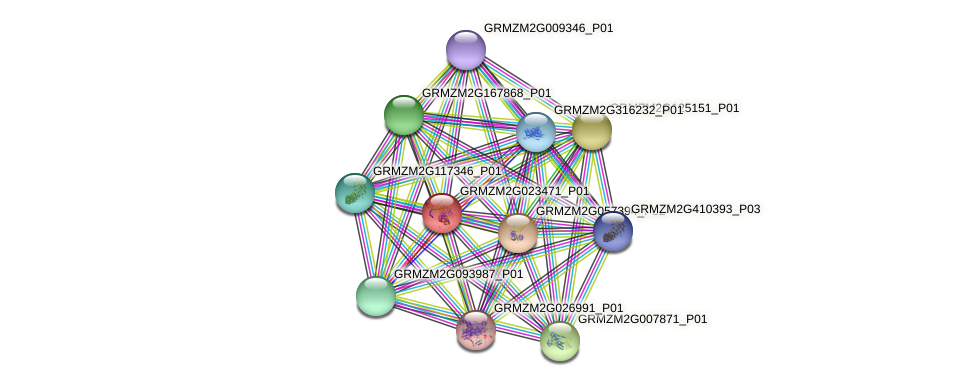 GRMZM2G023471_P01 protein (Zea mays) - STRING interaction network